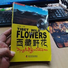 西藏野花【2012一版一印】