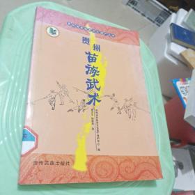 贵州苗族武术