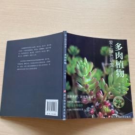 爱上绿色萌宠:多肉植物