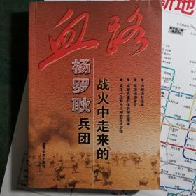 血路——战火中走来的杨罗耿兵团