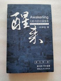 醒来:110年的中国变革
