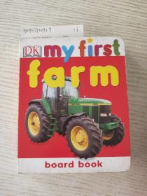 Dk my first(纸板童书)