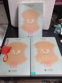 中国文库 大波(全三部)馆藏