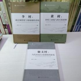 京师社会调查(套装全3册)