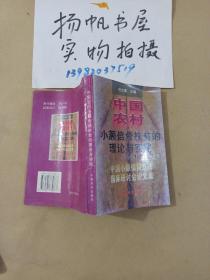 中国农村小额信贷扶贫的理论与实践:1996年中国小额信贷扶贫国际研讨会论文集