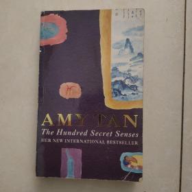 AMY TAN:the Hundred secret senses 英文原版