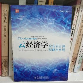 云经济学:企业云计算战略与布局