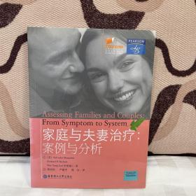 家庭与夫妻治疗:案例与分析