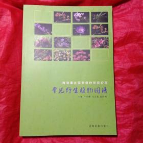 青海孟达国家自然保护区常见野生植物图谱