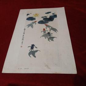 8开文革前后老画片(印刷品):《金鱼》吴作人作