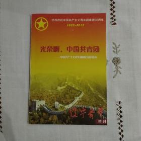 辽宁青年增刊