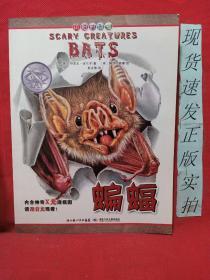 可怕的动物:蝙蝠