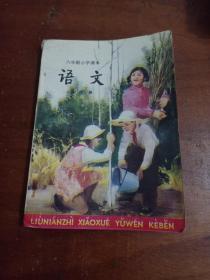 六年制小学课本语文第六册