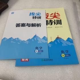 通城学典 拔尖特训 化学 九年级上 沪教版(有答案和解析)