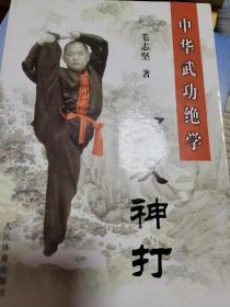 中华武功绝学:罗汉神打