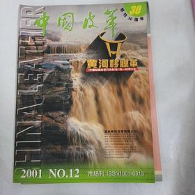 中国皮革2001年12期