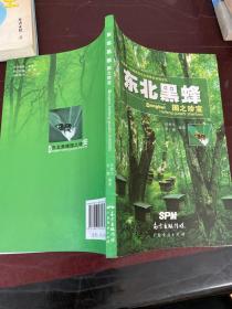 东北黑蜂——国之珍宝:中国唯一的国家级东北黑蜂自然保护区