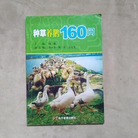 种草养鹅160问