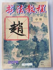 书法教程 中级(赵)