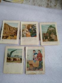 (五十年代日记本彩色散页)5张合售