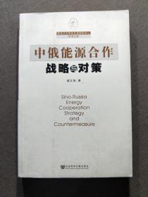 中俄能源合作战略与对策。