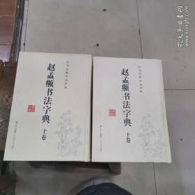 中华名家书法字典 赵孟頫书法字典(上下)正版库存~拒绝高仿!!