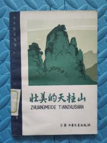 壮美的天柱山(少年游记丛书)