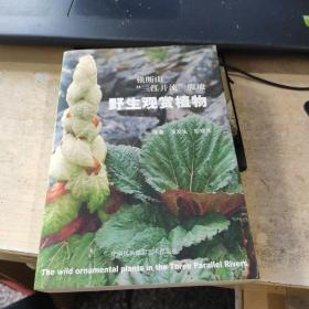"""横断山""""三江并流""""腹地野生观赏植物(实物拍照)"""