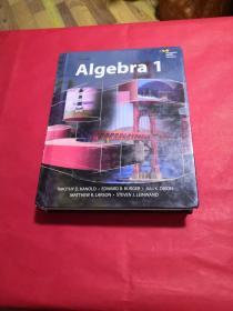 Algebra 1 代数1
