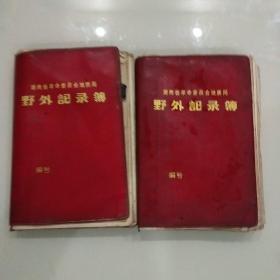 湖南省地质局野外记录簿(有记录内容,二本合售)