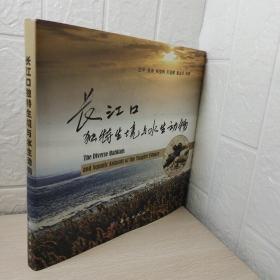 长江口独特生境与水生动物