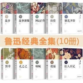 《鲁迅经典全集》全10册