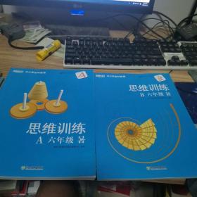 新东方 思维训练六年级a B 暑 (两本合售)