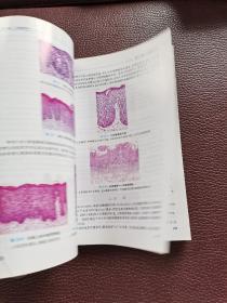 全国高等学校教材:口腔组织病理学(供口腔医学类专业用)(第7版)