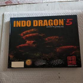 印尼神龙 5:INDO DRAGON  (画册)