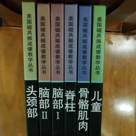 美国磁共振成像教学丛书  6本