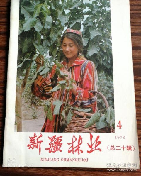 新疆林业1978年第4期#9