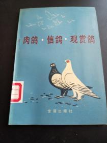 肉鸽。信鸽:观赏鸽(馆藏书)