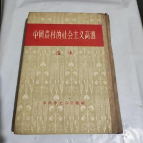 中国农村的社会主义高潮 选本【精装】