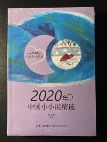 2020年中国小小说精选(2020中国年选系列)