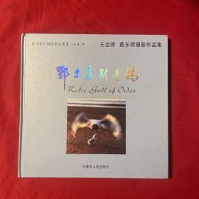 内蒙古摄影家丛集 王会师 戴东辉摄影作品集:鄂尔多斯遗鸥