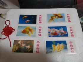 【收藏精品】1985年金鱼年历卡(共六张合售,品质如图)