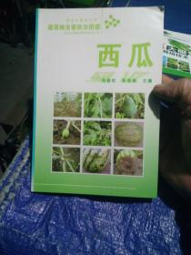 西瓜-蔬菜病虫害防治图谱