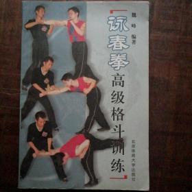 詠春拳高级格斗训练