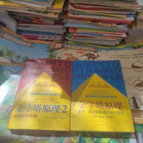金字塔原理系列 思考、表达和解决问题的逻辑 实用训练手册 共两本合售
