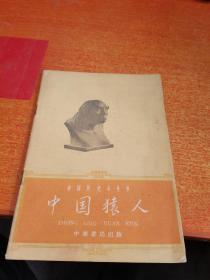 《中国猿人》