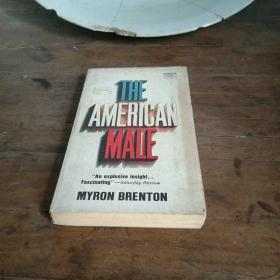 THE   ANERICAN   MALE
