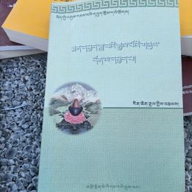 藏医经典月王药诊研究藏文