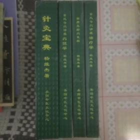 董氏针灸奇穴讲座全集(1-4册)