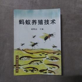 蚂蚁养殖技术